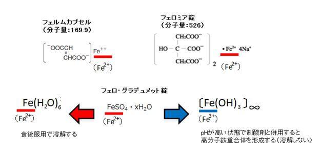 2価の鉄と3価の鉄の溶解