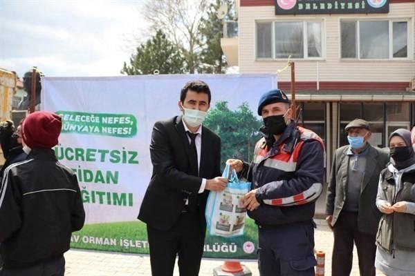 Vatandaşlara 18 bin ücretsiz fidan dağıtıldı