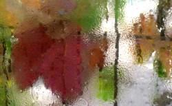 deszczowa jesień