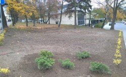 Nowe porządki w Parku Traugutta