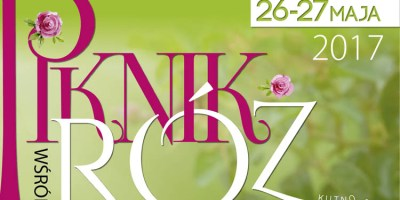 Przedsmak Święta Róży – niebawem Piknik Wśród Róż