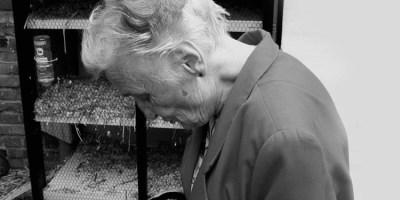 Choroba Alzheimera: NIK o opiece nad chorymi