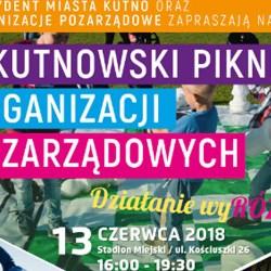 X Kutnowski Piknik Organizacji Pozarządowych