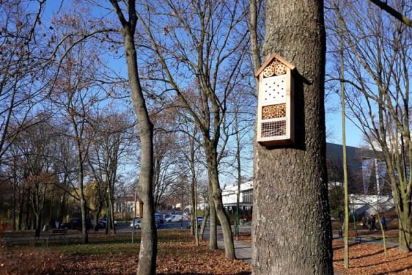 Domki dla zapylaczy pojawiły się w parkach