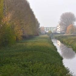 Zielona Oś Miasta - otwarcie ofert w piątym przetargu