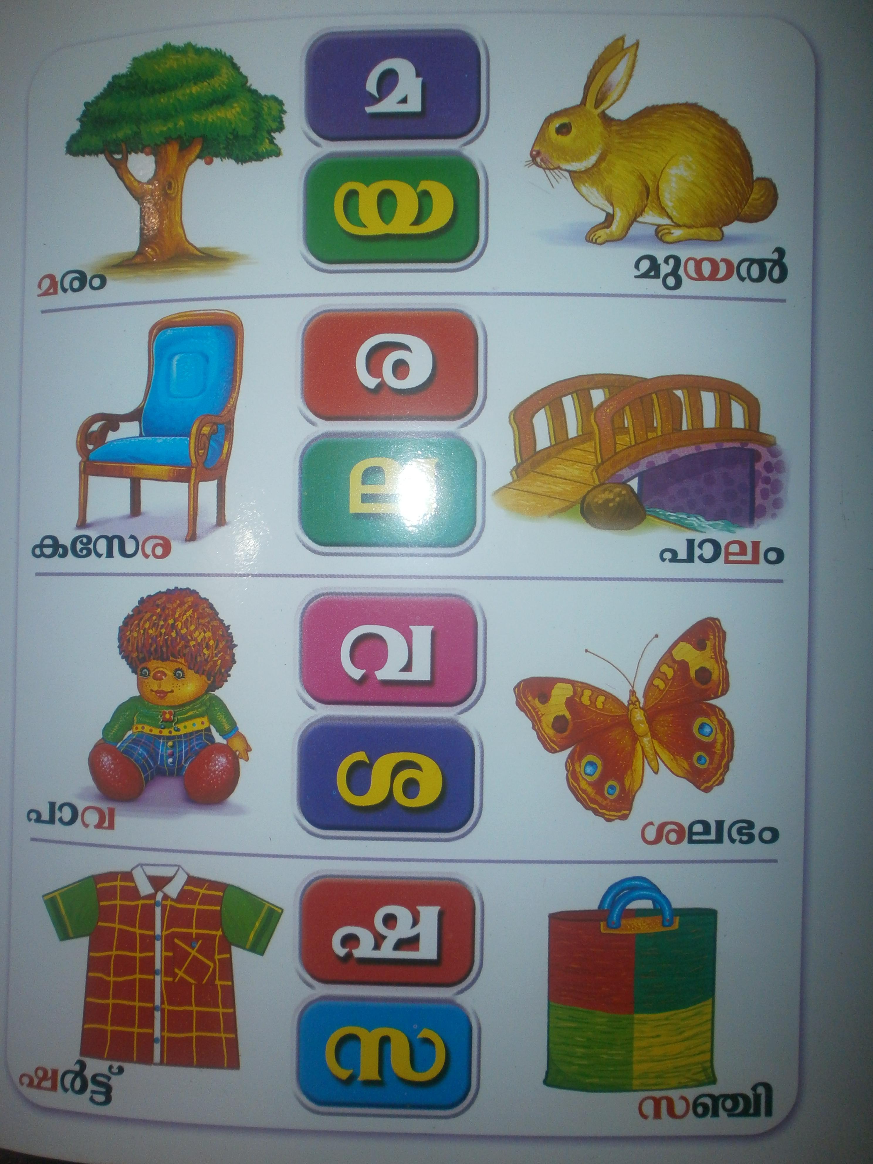 Words Hindi Alphabets
