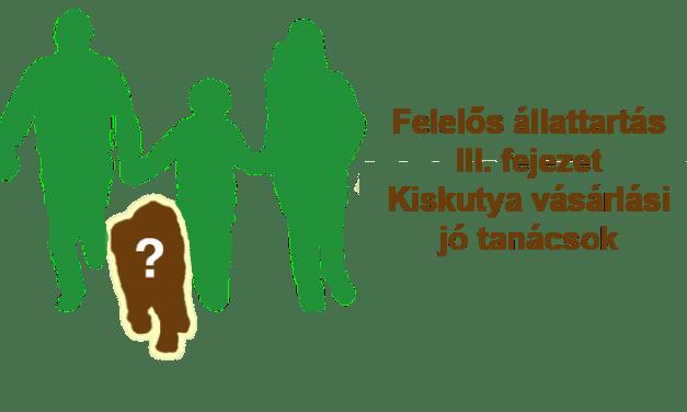 Felelős állattartás III. fejezet – Kiskutya vásárlási jó tanácsok