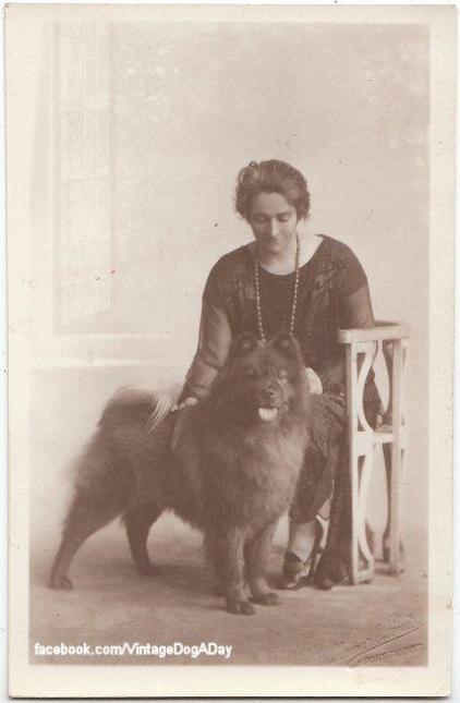 1925 chow