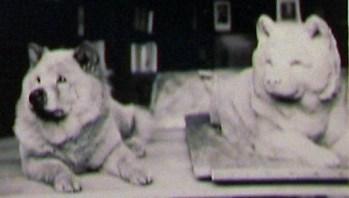 1938 Topsy és a róla készült szobor