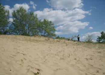 Kiskunsági homokbuckák