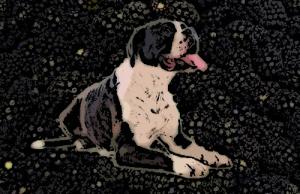 A kutya és a szeder