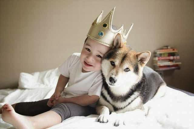 A kutyák csodákra képesek az autista gyermekeknél