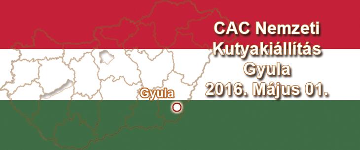 CAC Nemzeti Kutyakiállítás - Gyula - 2016. Május 01.