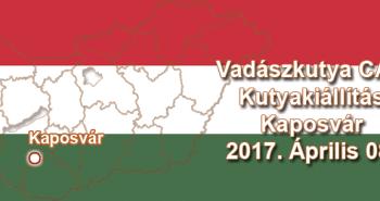 Vadászkutya CAC Kutyakiállítás – Kaposvár - 2017. Április 08.