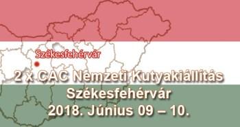 2 x CAC Nemzeti Kutyakiállítás – Székesfehérvár – 2018. Június 09 – 10.