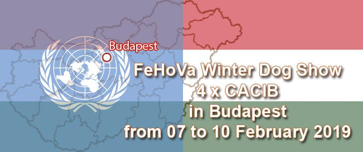 FeHoVa Winter Dog Show 4 x CACIB in Budapest from 07 to 10 February 2019