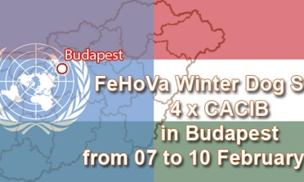 Winter Dog Show 4 x CACIB in Budapest from 07 to 10 February 2019