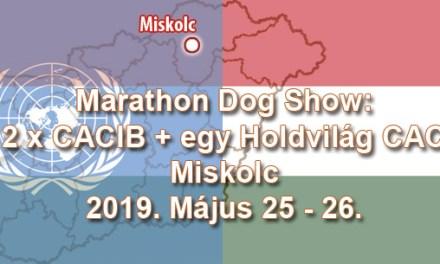 Marathon Dog Show: 2 x CACIB + egy Holdvilág CAC – Miskolc – 2019. Május 25 – 26.