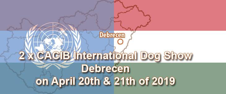 2 x CACIB International Dog Show in Debrecen on April 20th & 21th of 2019