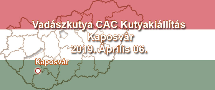 Vadászkutya CAC Kutyakiállítás – Kaposvár - 2019. Április 06.