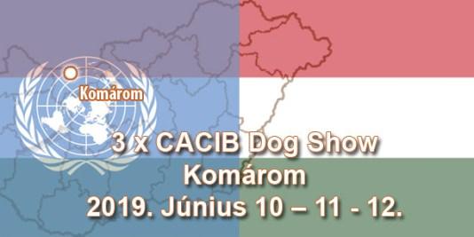 3 x CACIB Dog Show – Komárom – 2019. Június 10 – 11 - 12.