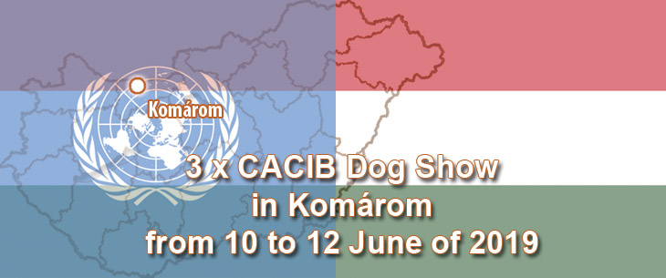 3 x CACIB Dog Show in Komárom from 10 to 12 June of 2019