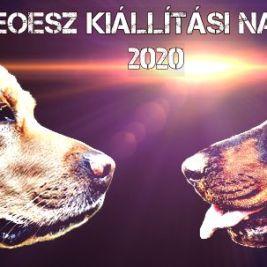 2020. évi kutyakiállítási naptár – Magyar Ebtenyésztők Országos Egyesületeinek Szövetsége