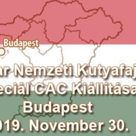 Magyar Nemzeti Kutyafajták Speciál CAC Kiállítása – Budapest – 2019. November 30.