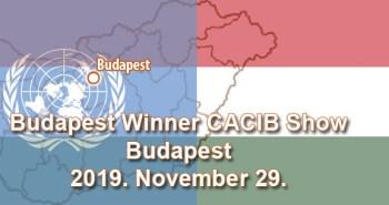 Budapest Winner CACIB Show – Budapest – 2019. November 29.