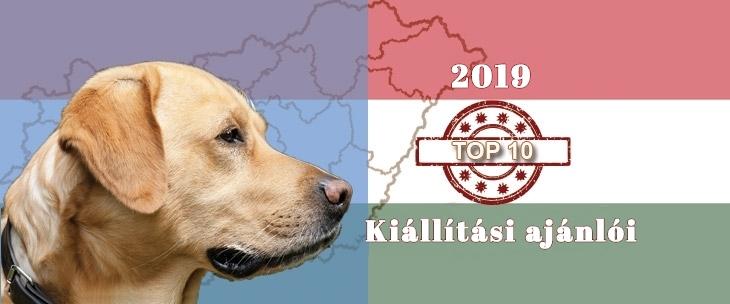 Kutya Portál 2019 TOP 10 kutyakiállítási ajánló