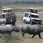 4 Day Tour to Tarangire, Ngorongoro Crater and Lake Manyara