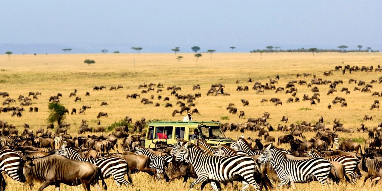 7 Day Luxury Safari to Serengeti and Tarangire