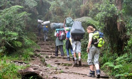 7 Days Climb  Kilimanjaro Western Breach Umbwe Route