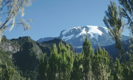 6 days Kilimanjaro Trekking Umbwe Route
