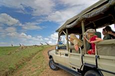 Game drive in Arusha National Park