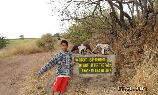 Tanzania Budget Safari Tarangire4 Days/3 Nights