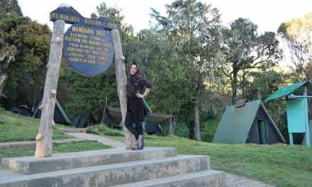 5 Days Climb Kilimanjaro