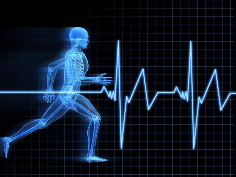Brainking Plus Meningkatkan Sistem Kekebalan Tubuh