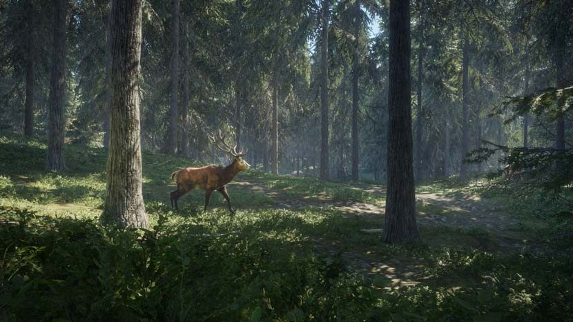 the-hunter-call-of-the-wild-pc-game-full-crack-8794339
