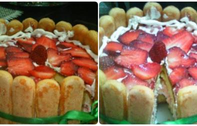 torta sharlote fjoralba