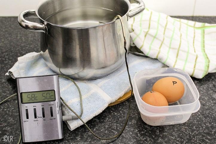 Pan heet water met een kookthermometer en de rauwe eieren.