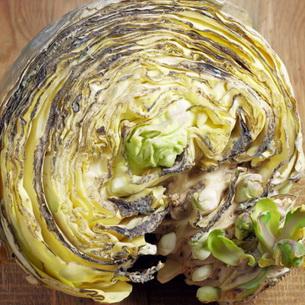Болезни и вредители капусты: фото, описание, чем можно ...
