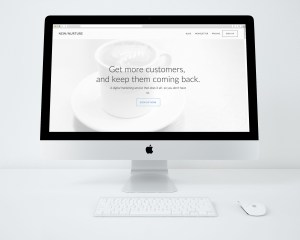 New/Nurture Website