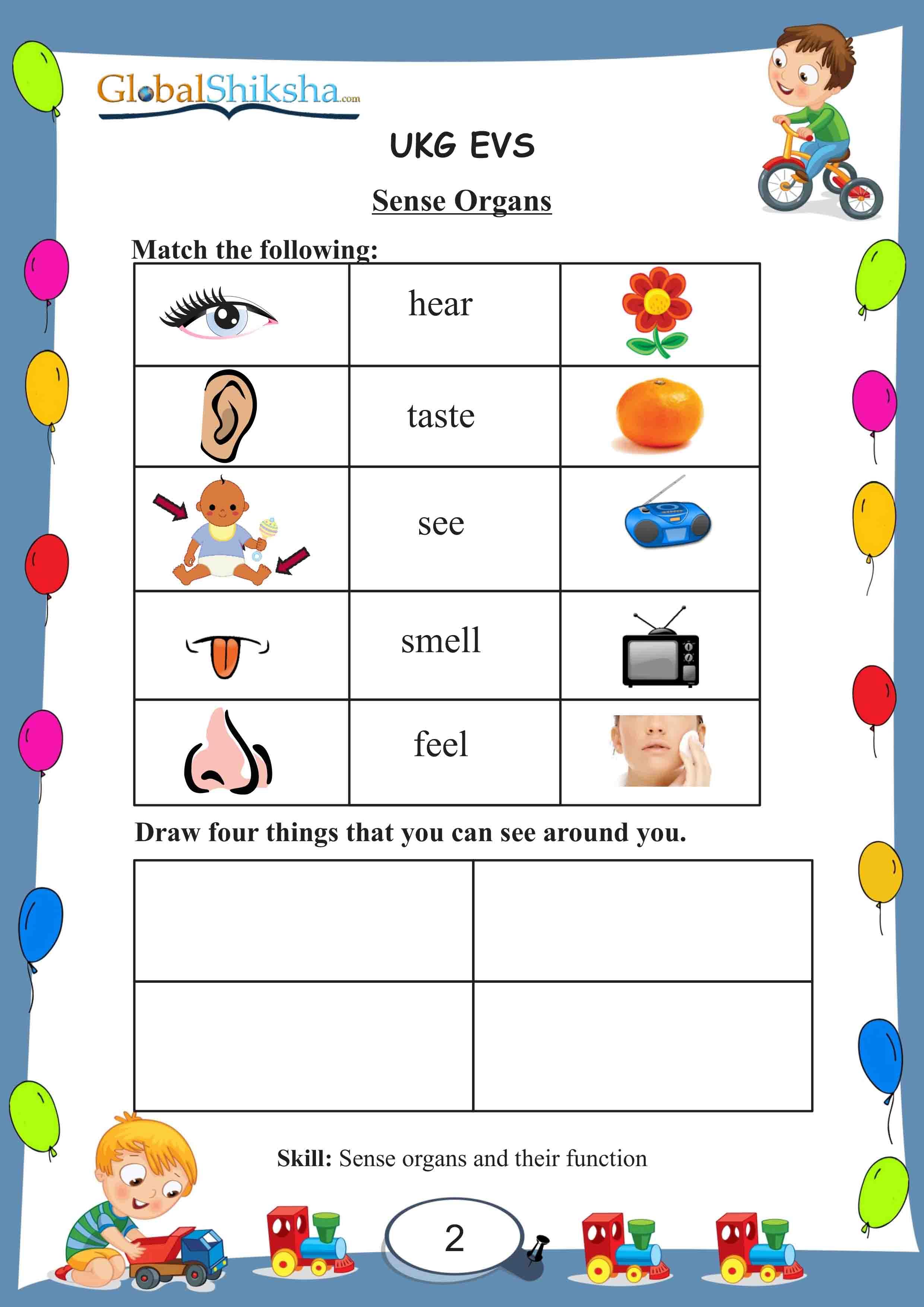 Worksheet For Class Ukg Cbse