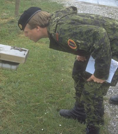Reserveofficer, som tør kysse frøen