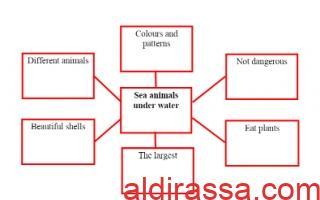 تقرير Sea animals under water لغة إنجليزية للصف السادس