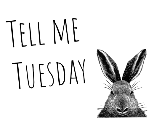 Tell me Tuesday ♥ Last, now and next