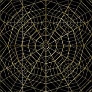Spider Web 7.1
