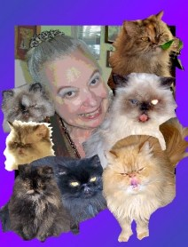 me and cats color prntshp-002