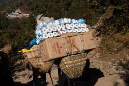 Tragarze przenoszą olbrzymie ładunki. Papier toaletowy osiąga szalone ceny